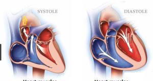Diastolic vs Systolic Blood Pressures