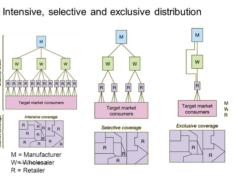 Selective Vs Intensive vs Exclusive
