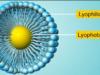 Lyophobic-vs-lyophilic-sols