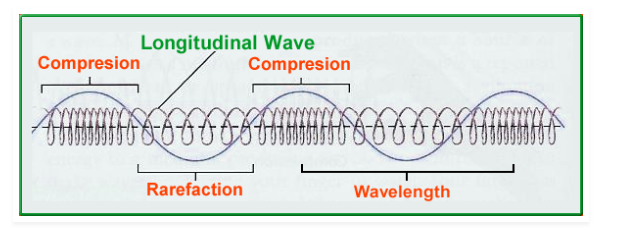 What Are Similarities & Differences Between Longitudinal And Transverse  Waves? - Viva Differences