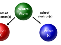 Cation-Vs-Anion