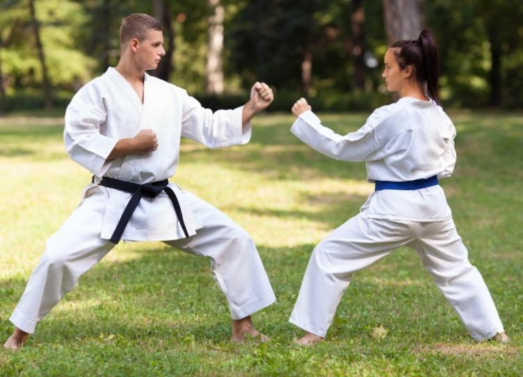 Taekwondo Vs Karate: History, (12 Differences & 6