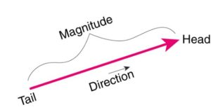 Magnitude-And-Direction